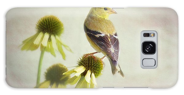 American Goldfinch On Coneflower Galaxy Case