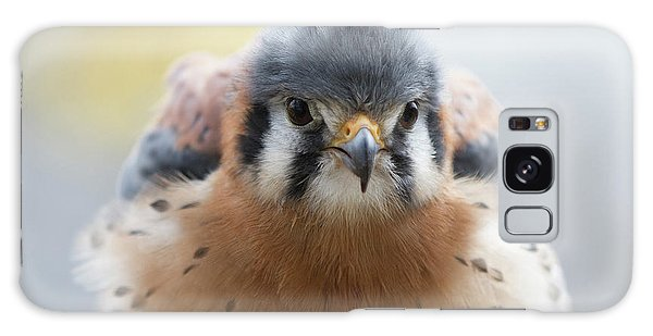 American Kestrel 1 Galaxy Case