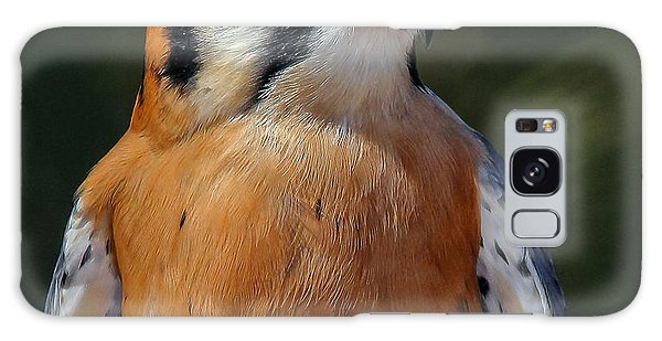 American Kestrel Portrait  Galaxy Case