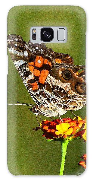 American Painted Lady Galaxy Case