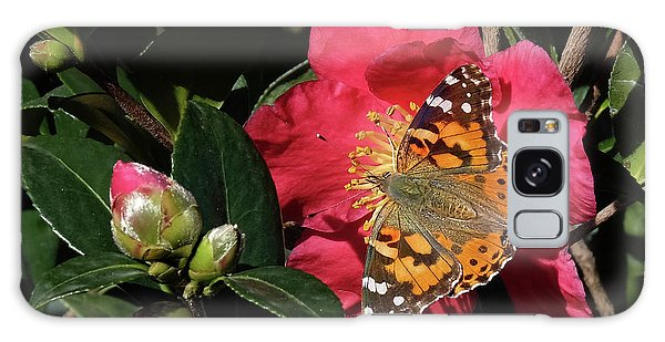 American Painted Lady On Camelia Galaxy Case