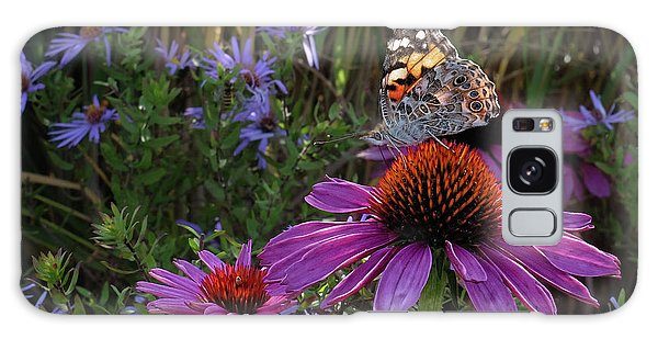 American Painted Lady On Cone Flower Galaxy Case