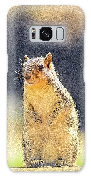 American Red Squirrel Galaxy Case