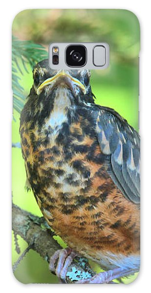 Galaxy Case featuring the photograph American Robin Fledgling by Debbie Stahre