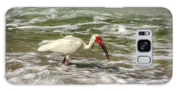 American White Ibis Galaxy Case