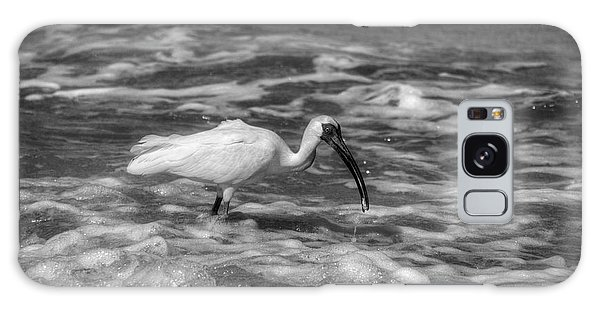 American White Ibis In Black And White Galaxy Case