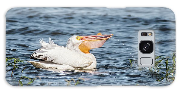 American White Pelican Male Galaxy Case by Robert Frederick