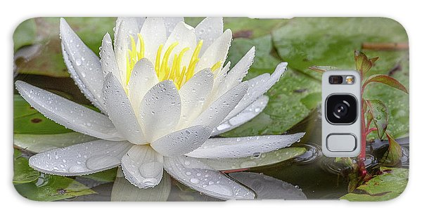 American White Water Lily Galaxy Case