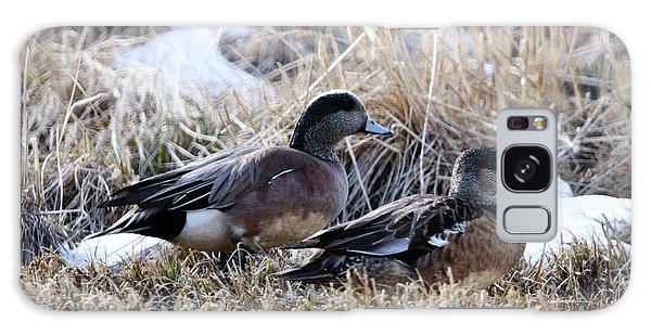 American Wigeon Mated Pair Galaxy Case