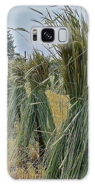 Amish Harvest Galaxy Case