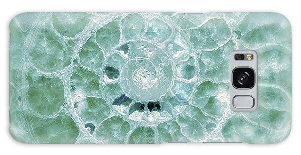 Ammonite Emerald Green Galaxy Case