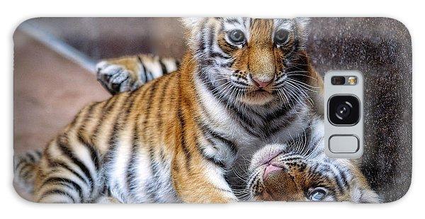 Amur Tiger Cubs Galaxy Case
