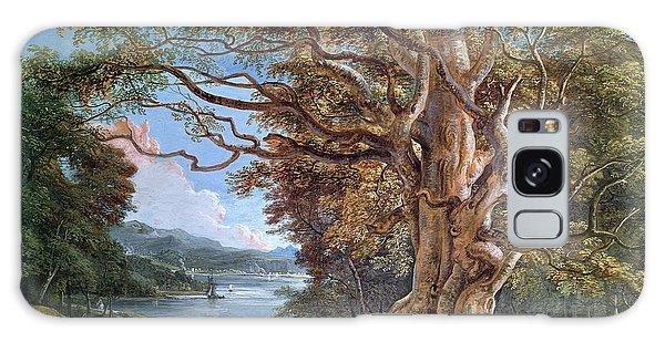 An Ancient Beech Tree Galaxy Case