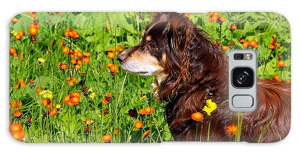 An Aussie's Thoughtful Moment Galaxy Case by Debbie Oppermann