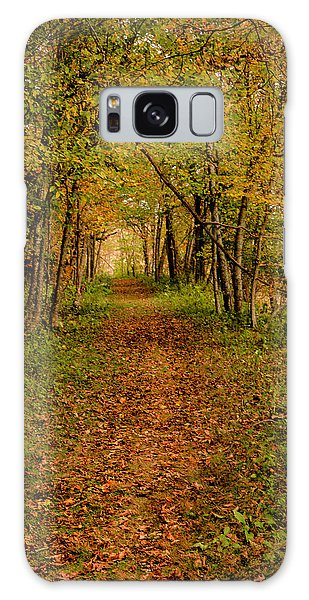 An Autumn's Walk Galaxy Case