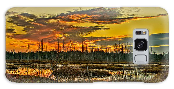 An November Sunset In The Pines Galaxy Case