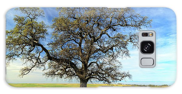 An Oak In Spring Galaxy Case by James Eddy
