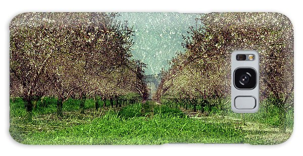 An Orchard In Blossom In The Eila Valley Galaxy Case