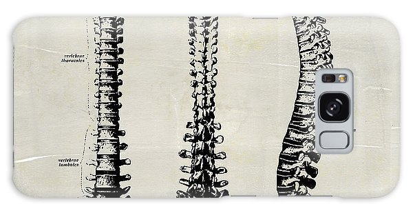 Anatomical Spine Medical Art Galaxy Case