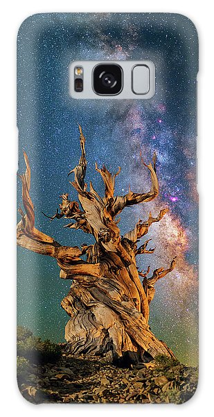 Ancient Beauty Galaxy Case