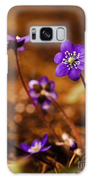 Anemone Hepatica Galaxy Case