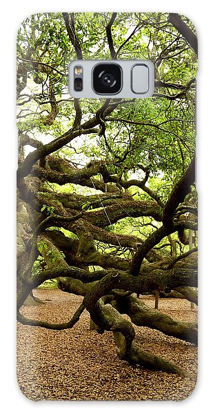 Angel Oak Galaxy Case