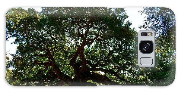 Angel Oak Tree 2004 Galaxy Case