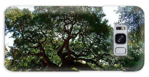Angel Oak Tree 2004 Galaxy Case