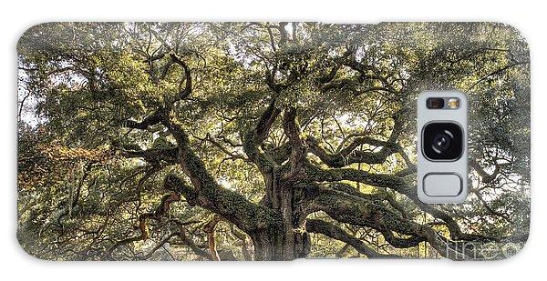 Angel Oak Tree Live Oak  Galaxy Case