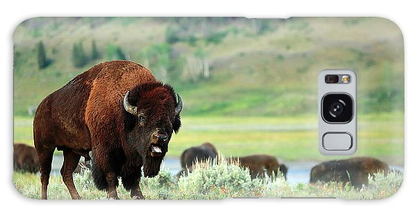 Bison Galaxy S8 Case - Angry Buffalo by Todd Klassy