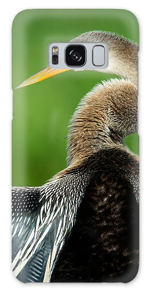 Anhinga Anhinga Anhinga, Pantanal Galaxy Case by Panoramic Images