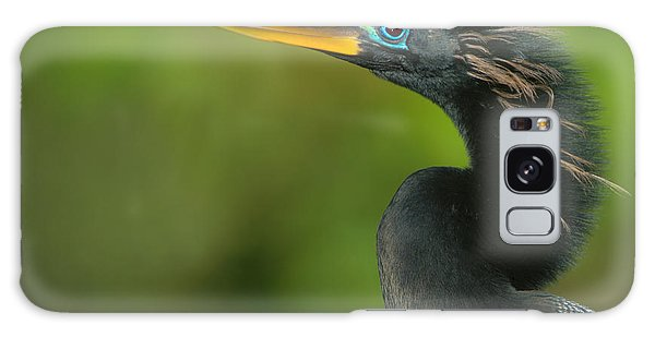 Anhinga Anhinga Anhinga, Tortuguero Galaxy Case by Panoramic Images