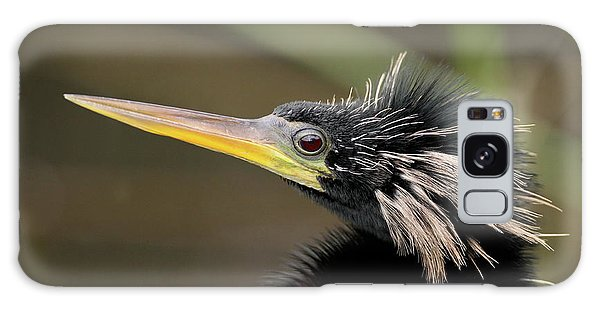 Anhinga Close-up Galaxy Case