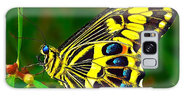 Anise Swallowtail Butterfly Galaxy Case