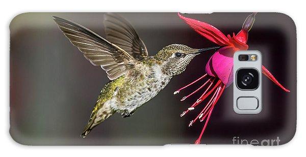 Anna Immature Hummingbird Galaxy Case