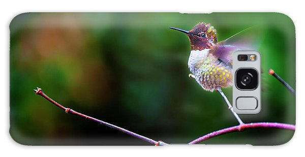 Anna's Hummingbird IIi Galaxy Case