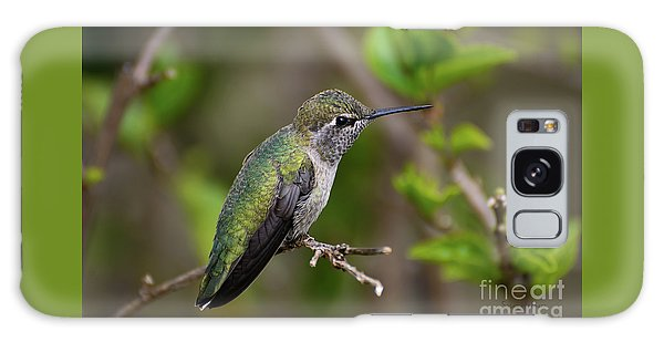 Anna's Hummingbird On Lime Tree Galaxy Case