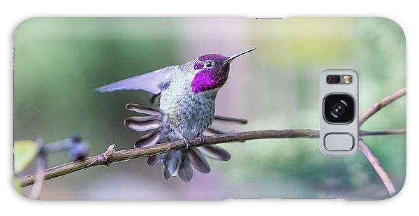 Anna's Hummingbird Stretching Galaxy Case