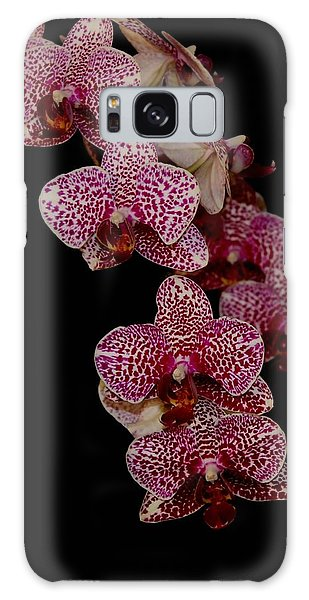 Anniversary Orchid Plant On Black Galaxy Case