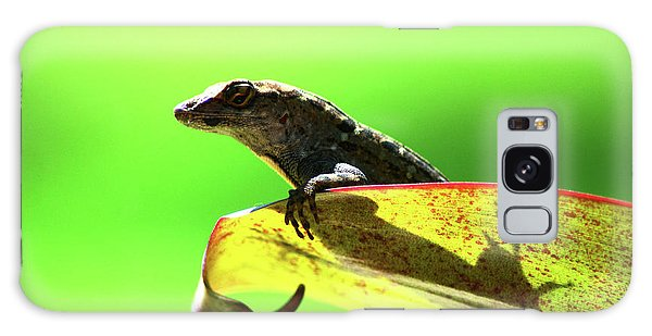 Anole In Green Galaxy Case