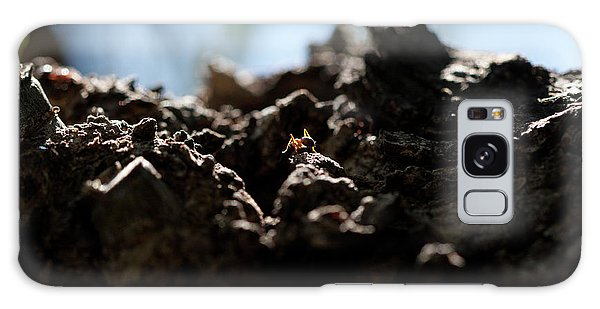 Ant Galaxy Case
