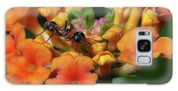 Ant On Plant  Galaxy Case by Richard Rizzo
