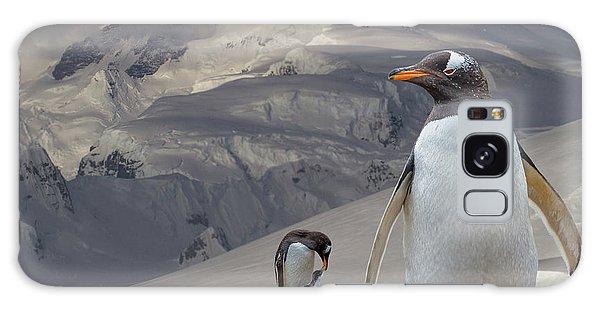 Antarctic Magesty Galaxy Case
