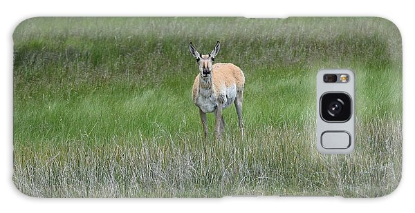 Prong Horned Antelope Lake John Swa Co Galaxy Case