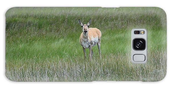 Prong Horned Antelope Lake John Swa Co Galaxy Case