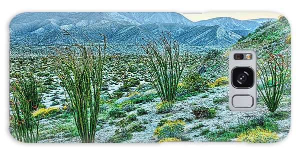 Anza Borrego Twillight Galaxy Case