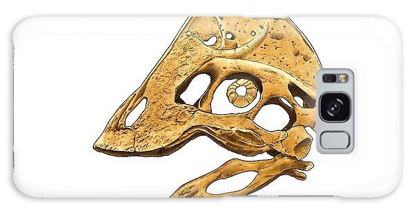 Anzu Wyliei Skull Galaxy Case
