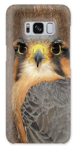 Aplomado Falcon Portrait Galaxy Case