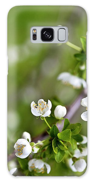 Blossoms Galaxy Case - Apple Blossoms by Nailia Schwarz