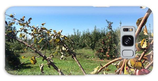 Apple Orchard 1 Galaxy Case by Jason Nicholas